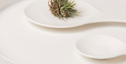 Urban Nature Serving Plate