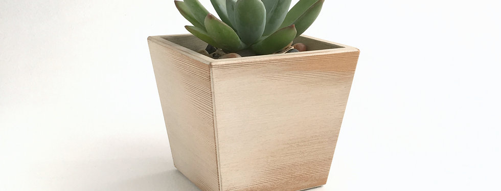 White Wood Succulent Planter