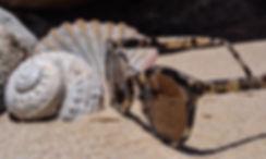 Tortoishell sunglasses