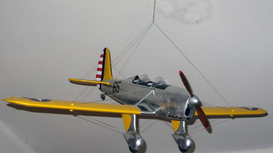 RYAN PT-20