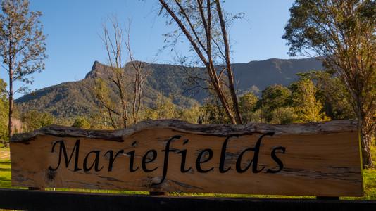 Mariefields-54.jpg