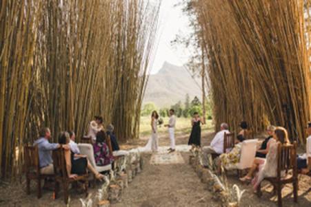 bamboo aisle wedding.jpeg