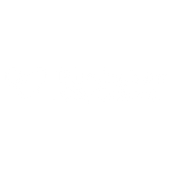 bham-council.png