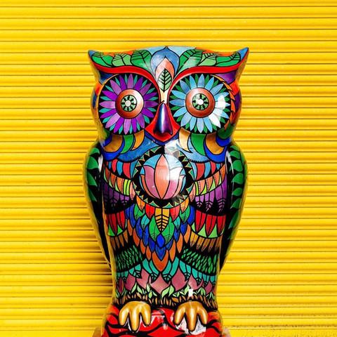 Sherwood The Wise Owl