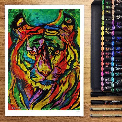 Laetus the Tiger - A3 Print