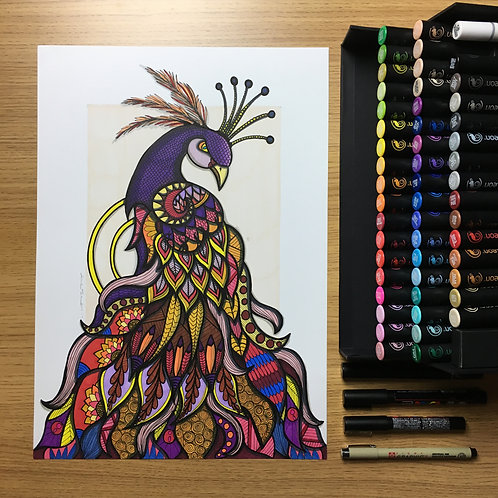 The Majestic Peacock - A3 Print
