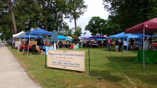 Delmar Day in the Park - June 1, 2019