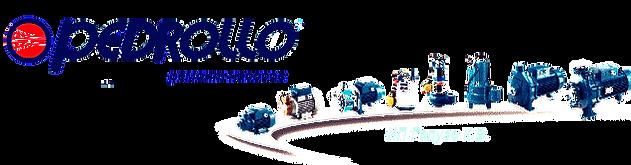 Насосы Pedrollo: дренажные насосы, вихревые насосы, подача воды, продажа, выезд на дом