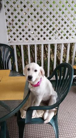 Sophie Happy Thor