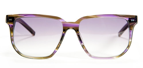 GUY BROWN PURPLE TORTOISE