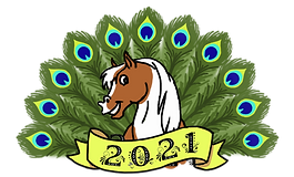 Logo_PHR_2021.png