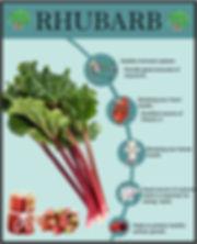 rhubarbfacts.jpg