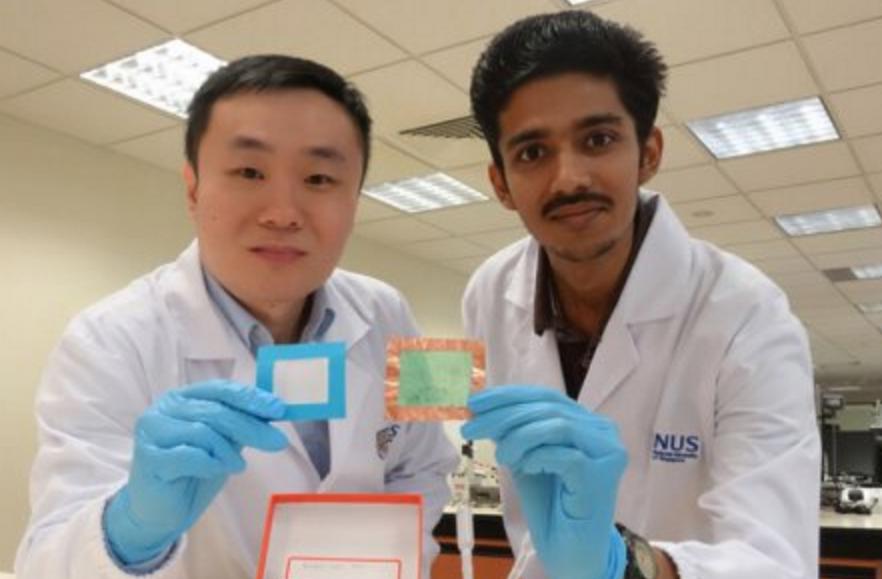 Учёные разработали прозрачное экологичное нановолокно, очищающее воздух