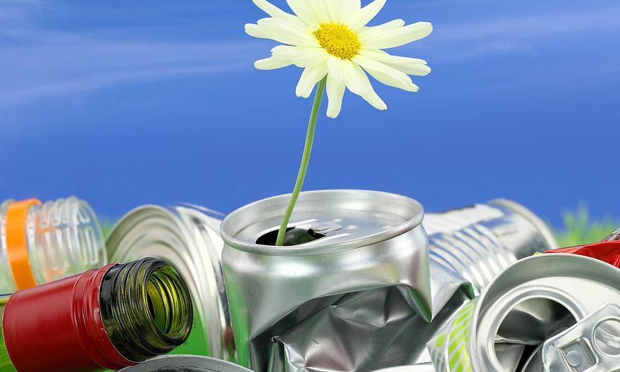 Доходы из отходов: успешные проекты, которые зарабатывают на мусоре