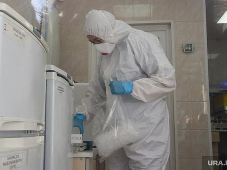 URA.RU: Новое средство обнаружения коронавируса изобрели в России