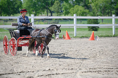 tcca_2020_events_03_22_beginner_clinic_a