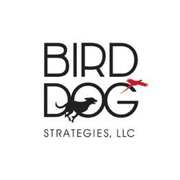 Bird Dog Strategies.png