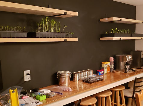Diy Kitchen bar.jpg