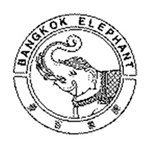 BangkokElephant