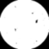 Chicopee Logo-White.png