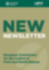 NOW_newsletter.jpg