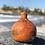 Thumbnail: Beached Jug