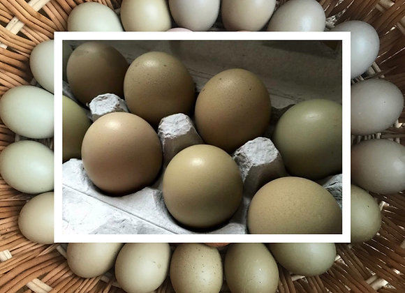 6 Olive Egger Eggs (1/2 Dozen)