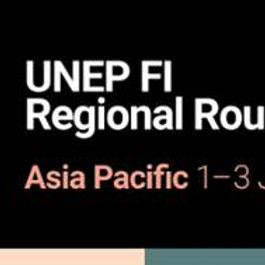 UNEP FI Regional Roundtable Asia Pacific 2021