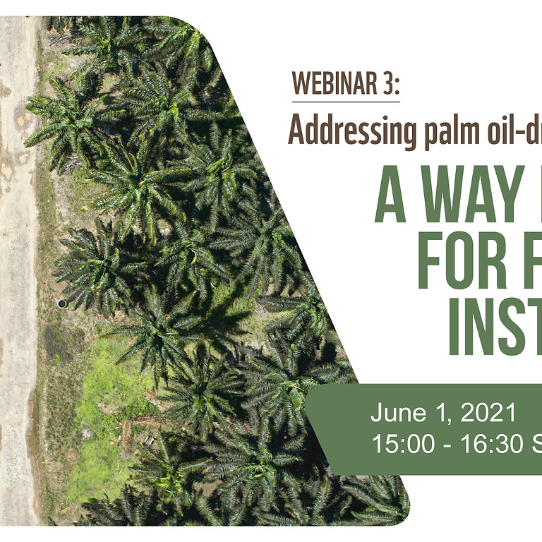 Addressing Palm Oil-Driven Deforestation: A Way Forward for Financial Institutions