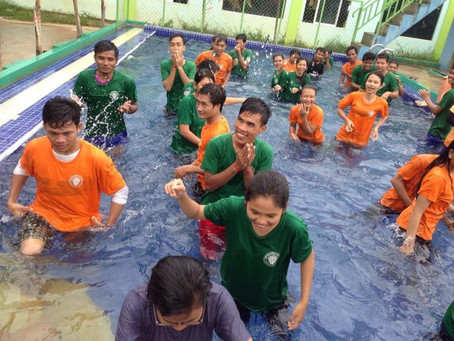 Swimming - Sport Activity