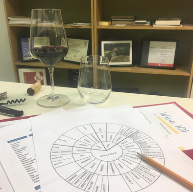 Wine 101 Course Materials
