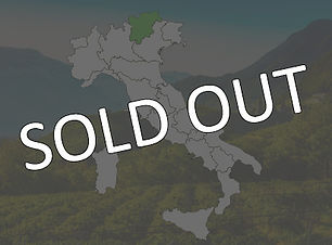 SOLD OUT - TRENTINO-.jpg