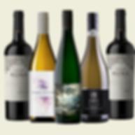 Wine Bundle - Wine 101 Day 1 NEW.png