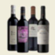 Wine Bundle - Malbec.png