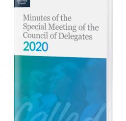 2020년 총대 위원회 (COD) 특별 모임