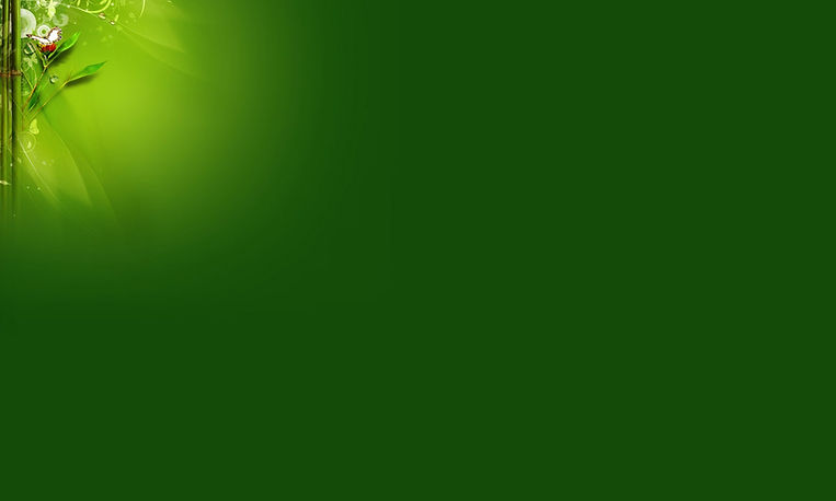 background verde 10.jpg