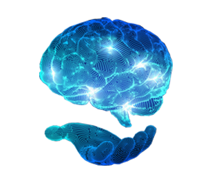cerebro.tif