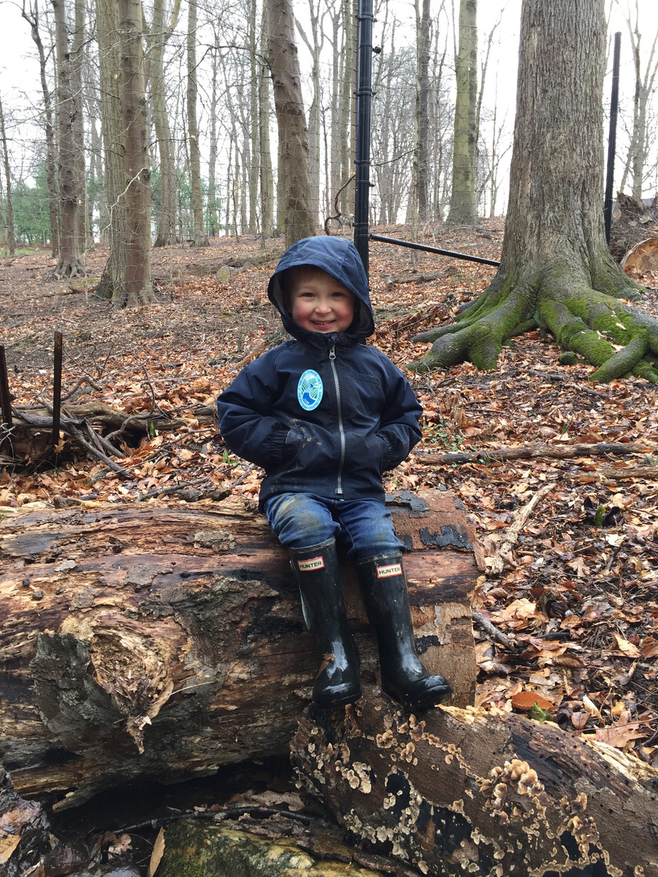 Why I decided to start a Forest Kindergarten.