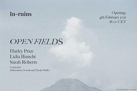 open field - corretto.jpg