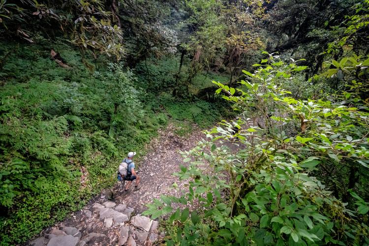 Hiking in the Himalaya