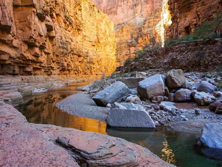 Amongst the Canyon Walls