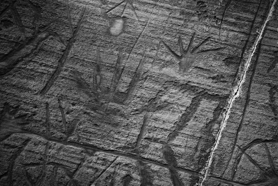 Petroglyph panel in Grand Canyon