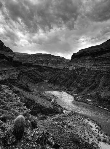 Rapids on the Colorado River