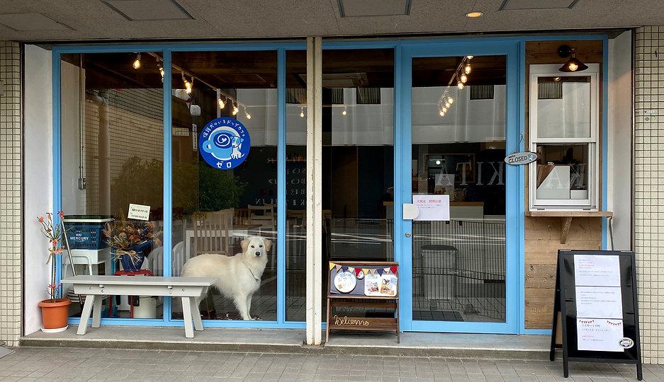 枚方市 保護犬のいるドッグカフェゼロ 1.jpg