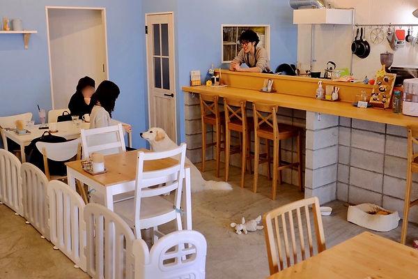 枚方市 保護犬のいるドッグカフェゼロ 2.jpg