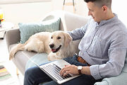 Working from home - image 6.jpg