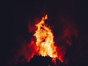 Bonfire of the bureaucracy?