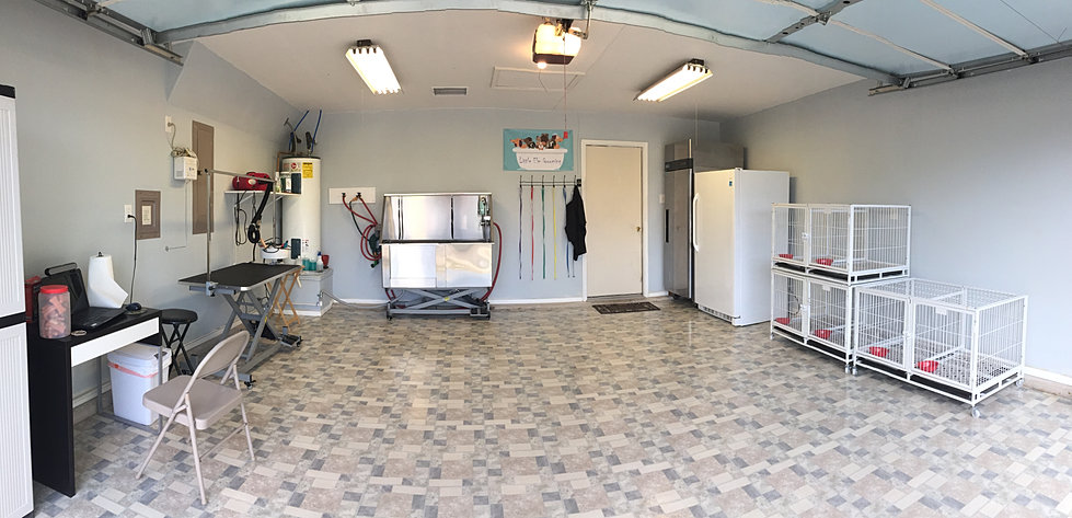 Little Elm Dog Grooming