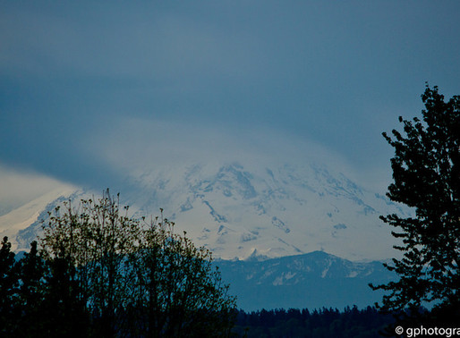 Collection: Mount Rainier
