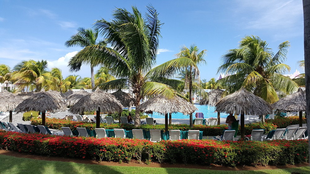 Welcoming resort area at Riu Hotel Montego Bay in Montego Bay, Jamaica